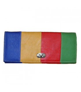 Four color fashion clutch