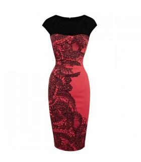 Spezialfarbenes elegant spitzenverziertes Kleid