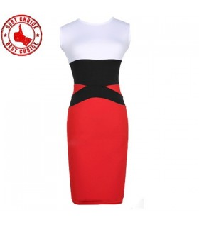 Colorblock bodycon pencil dress
