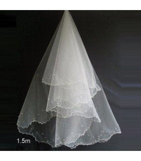 Delicate veil for wedding dress