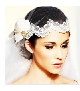Jewelled feather lace wedding veil